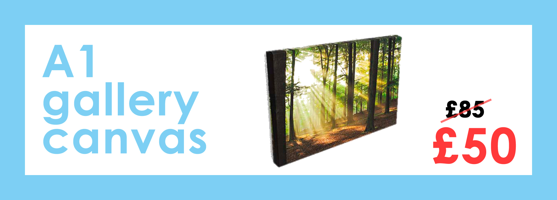 A1 Gallery Canvas Offers